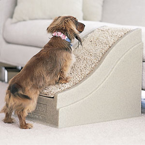 Pawsteps Easy Pet Ramps Order