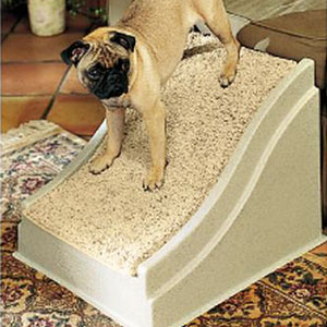 Using Stairs For Put To Get On Bed